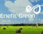 Enefit Green zwiększa produkcję energii