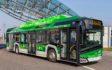 Elektryczne Solarisy pojadą do Wenecji