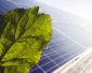 Trzykrotny wzrost ilości mikroinstalacji w sieci Energi