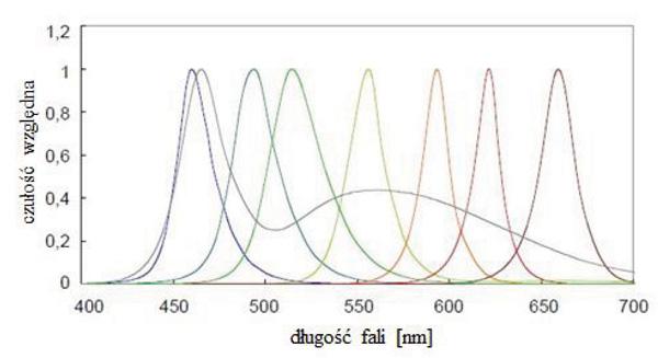 Rys. 3. Względne rozkłady widmowe mocy promienistej typowych diod LED