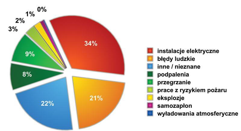Rys. 2. Przyczyny pożarów w Niemczech (2010 r.)