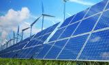 PZU ubezpieczy instalacje PV i wiatrowe przedsiębiorców