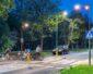 Rosa: System Oświetleniowy Bezpieczne Pasy