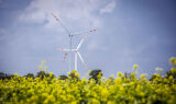 Tauron buduje kolejną farmę wiatrową