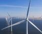 Tauron chce mieć 1 GW mocy w morskiej energetyce wiatrowej