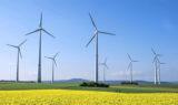 Serbia rozpoczyna rozwój odnawialnych źródeł energii